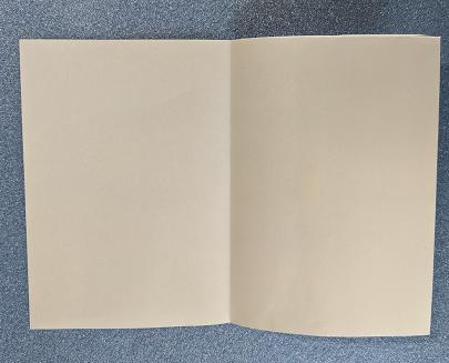 09 20210109折り紙1